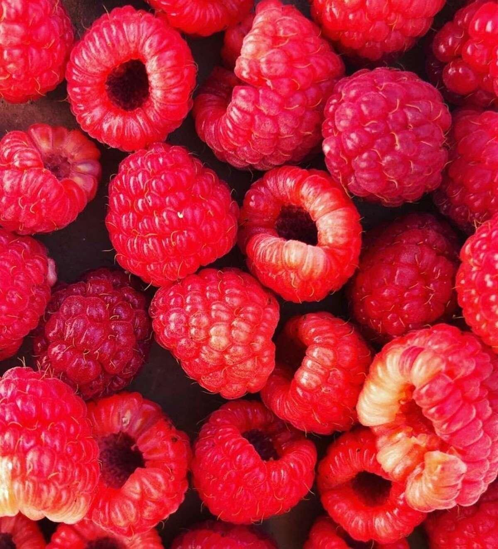Raspberry picking season runs through July and August.
