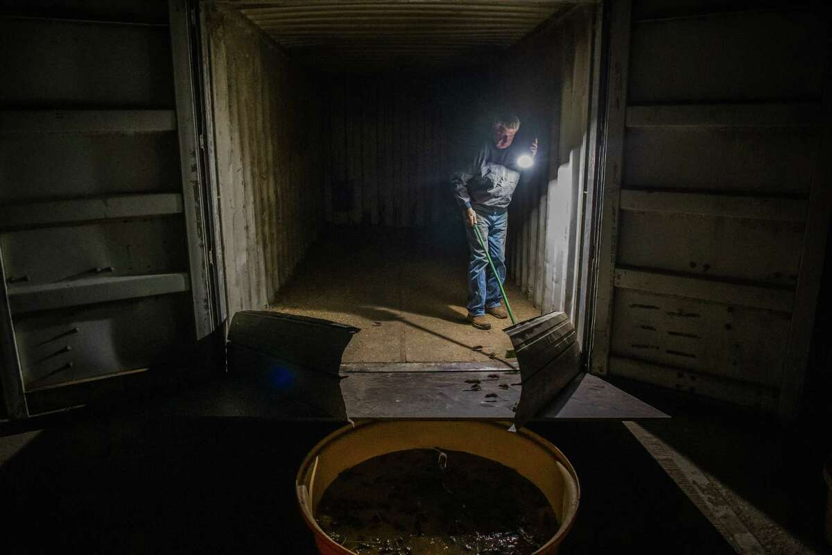 Colin Tink, inside his giant homemade mouse trap, pushes mice into a bath to drown the mice near Dubbo, NSW, Australia on May 26, 2021.
