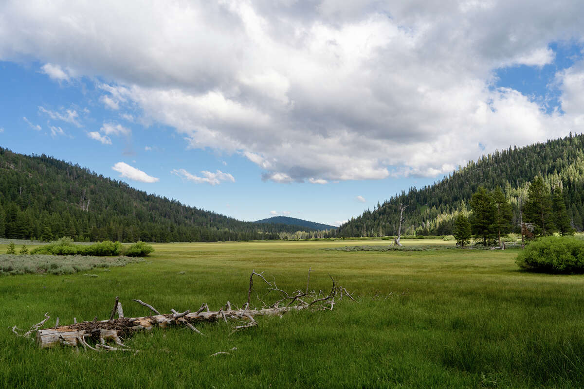 Lower Carpenter Valley is protected from development thanks to the Truckee Donner Land Trust and the Nature Conservancy, as part of the Northern Sierra Partnership.