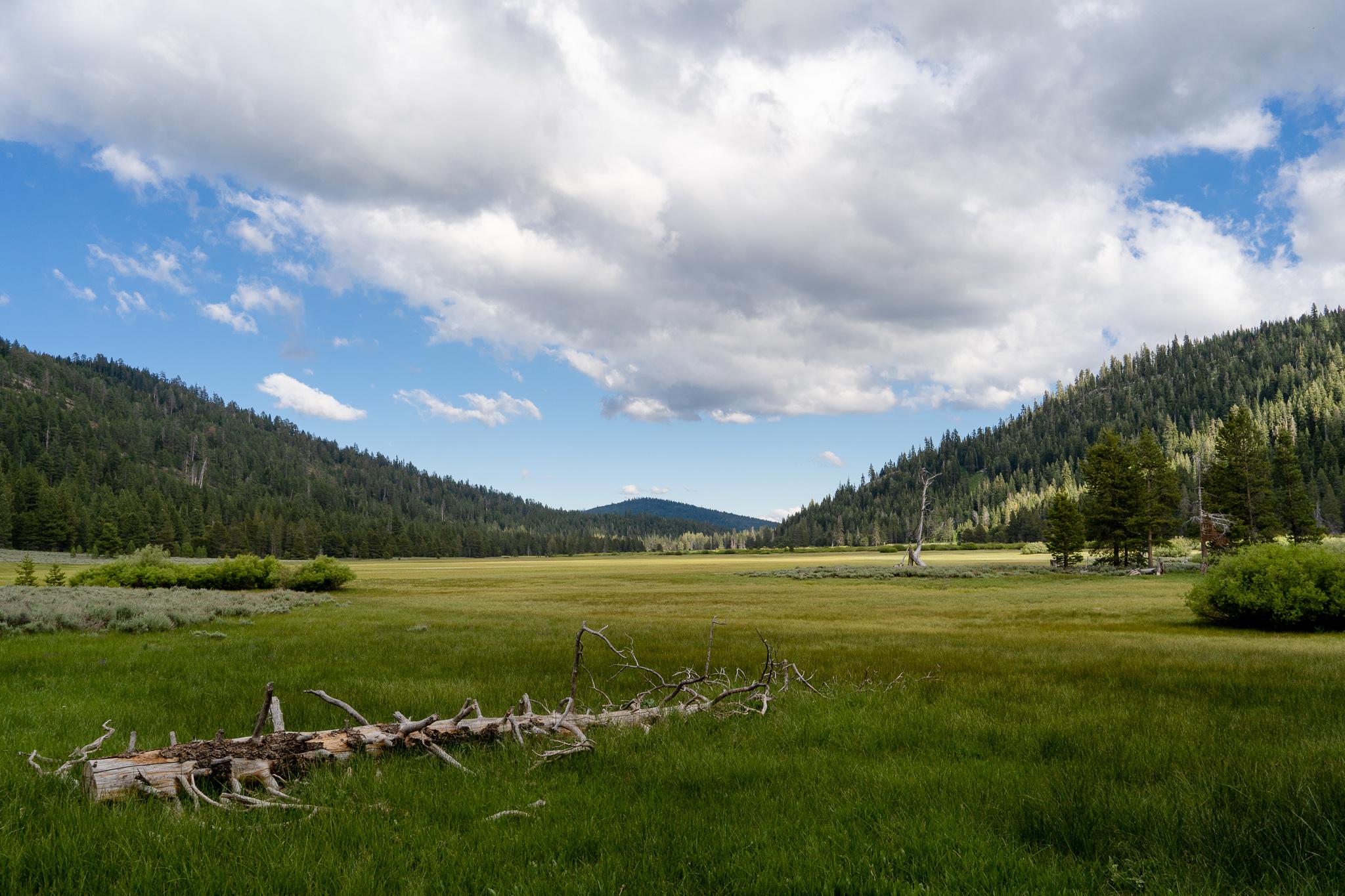 A new trail unlocks the 'secret garden' of the Sierra