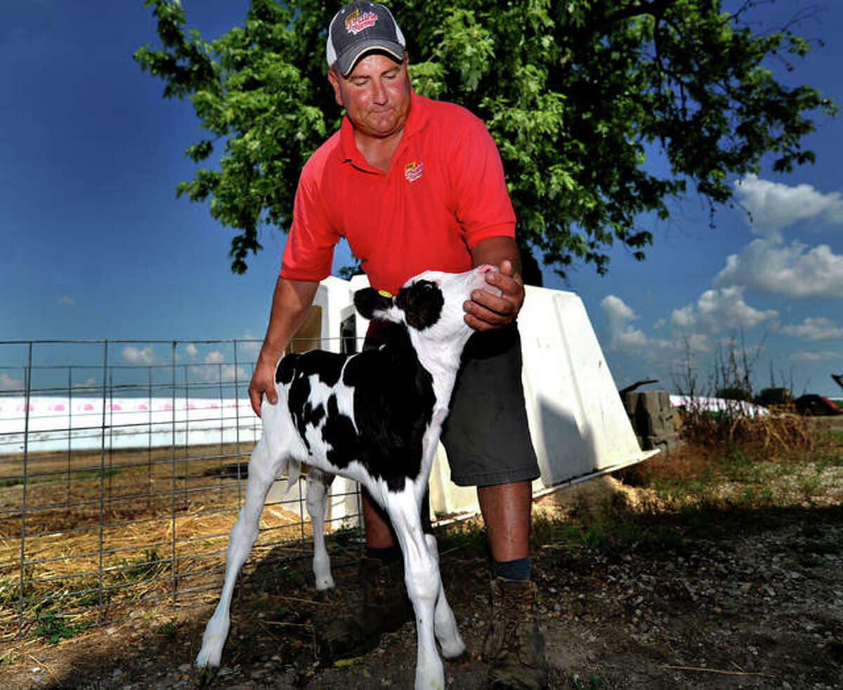 Frank Doll of Doll's Dairy Farm in Pocahontas, Illinois, with a 2-day-old Holstein calf at his farm last Friday.