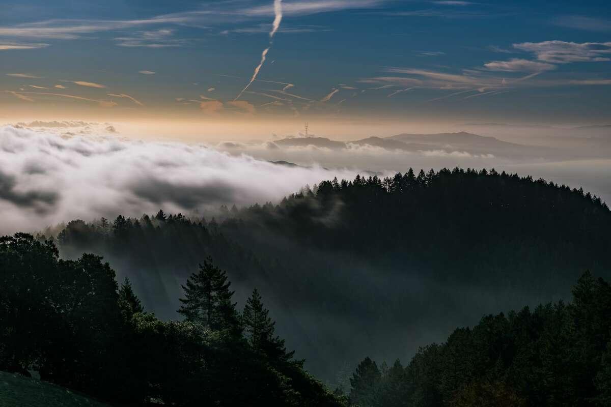Mount Tamalpais, Marin County, Calif.