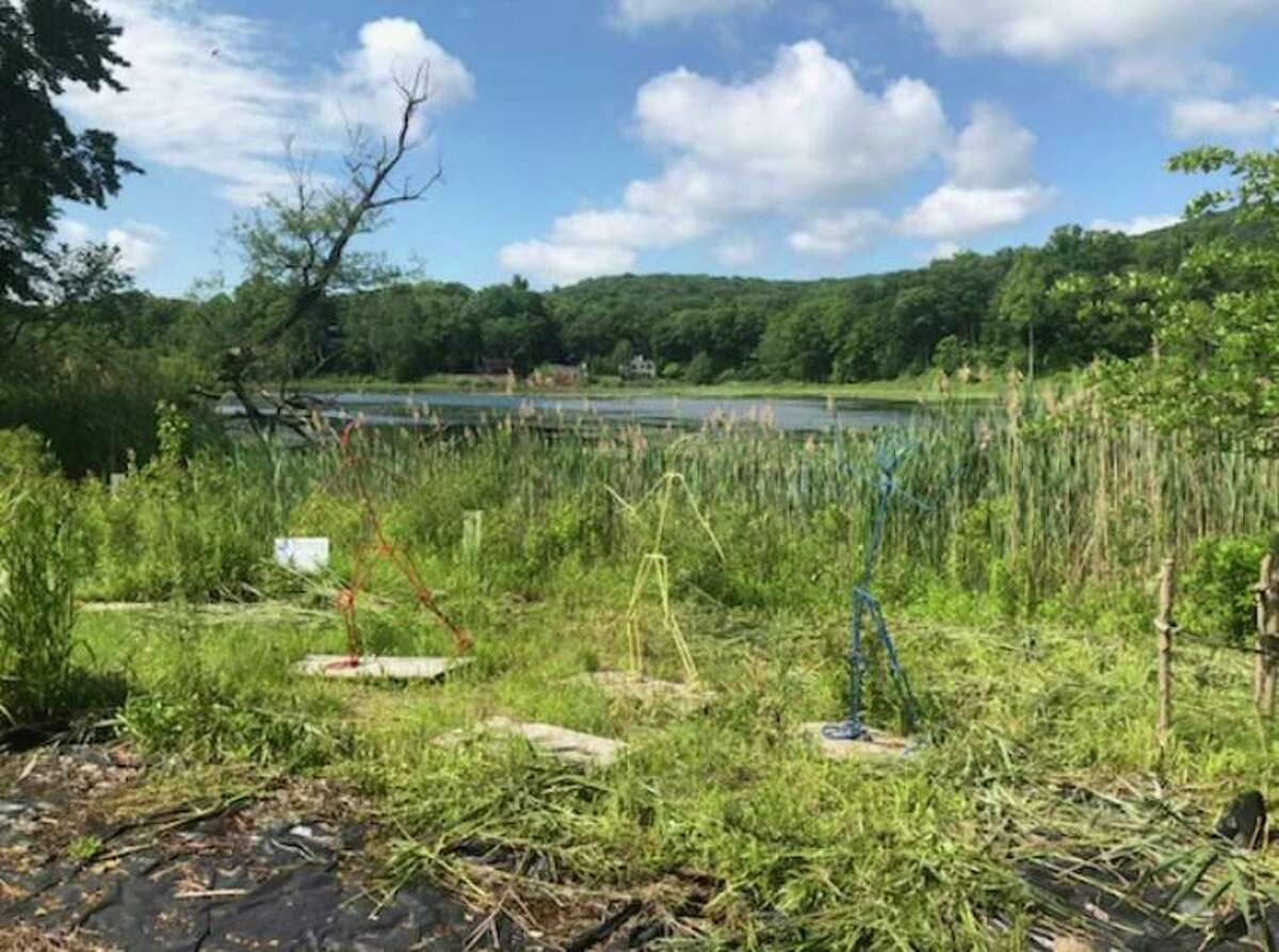 Some members of the Fox Hill Lake Association are shelling out hundreds of dollars to help treat the lake's overgrowth of marine plants.