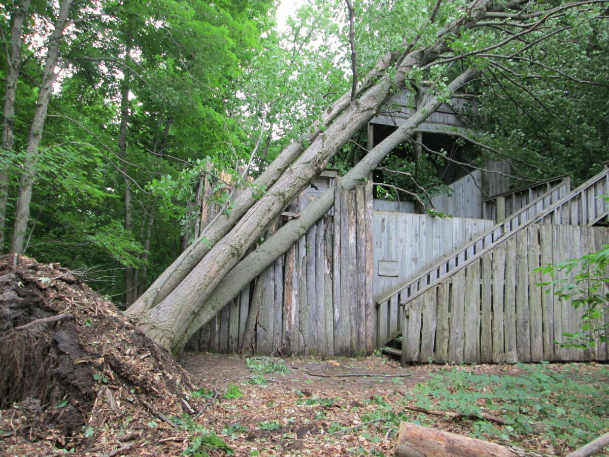 """Localized strong winds from a """"pop-up"""" storm in Thompsonville pushed over trees at Michigan Legacy Art Park, damaging structures and art installations."""