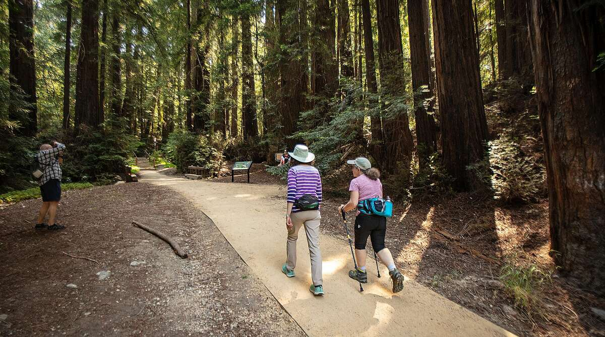 Hikers enjoy the trails in Pfeiffer State Park. Numerous solo hikers have been reported missing this year. But there are several steps hikers can take to avoid peril.