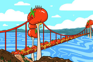 The film review aggregation site Rotten Tomatoes was founded in the Bay Area in 1998.