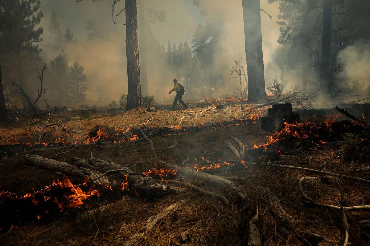 James Brogan, a Modoc National Forest fuels technician, ignites a prescribed burn on May 11, 2021. The forest is one of several parts of California under a red flag warning for extreme fire danger.