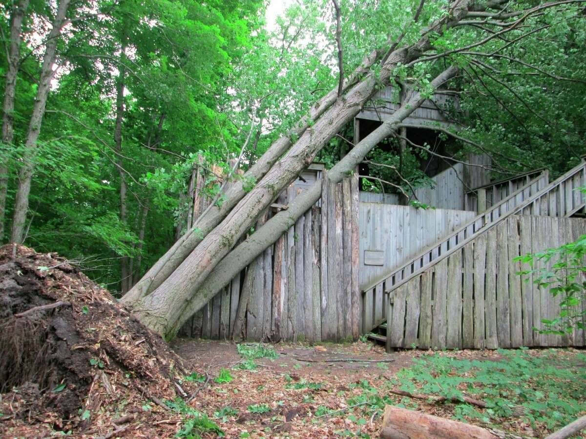 """Localized strong winds from a """"pop-up"""" storm in Thompsonville pushed over trees at Michigan Legacy Art Park, damaging structures and art installations. (Courtesy Photo)"""