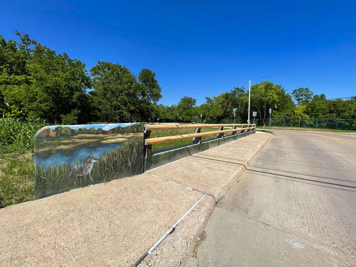 The Deerwood and Riverview bridge mural painted by artist Larry Crawford features nature scenes like this coyote on the banks of the water habitat around Westchase District. The bridge connects traffic into Walnut Bend subdivision.