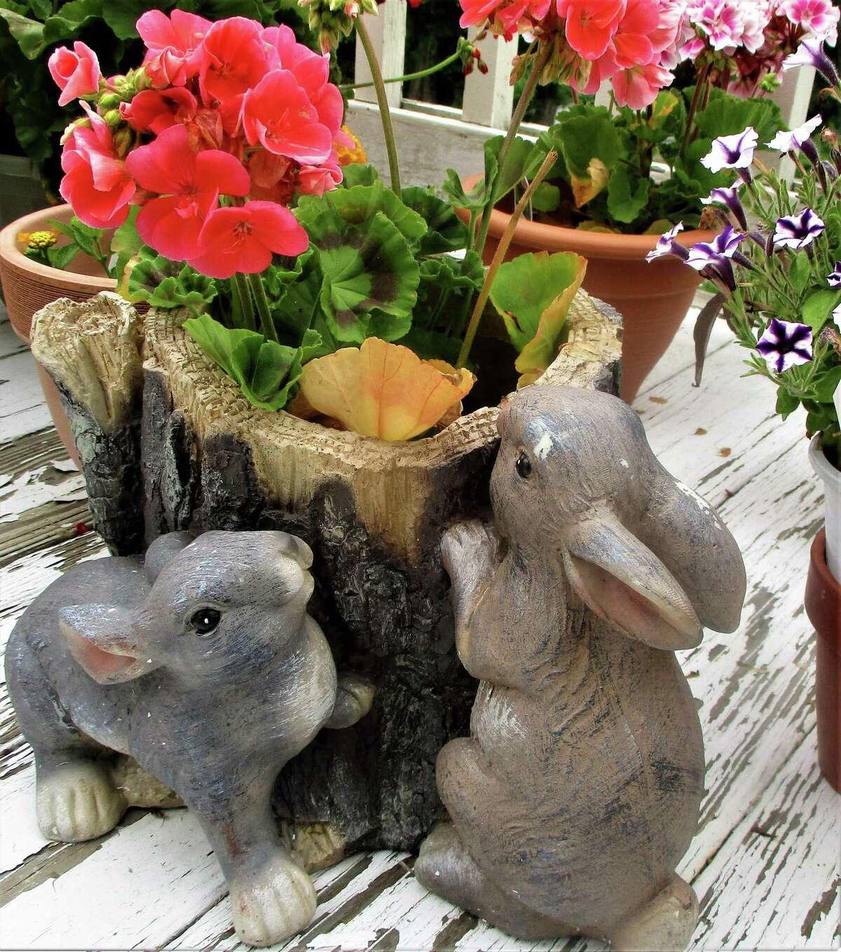 Bunnies and tree stump plantar