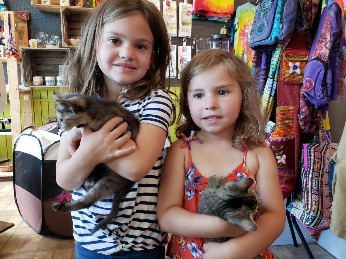 (From left) Charlie Patrick, 6, and Frankie Patrick, 4, hold Moonbeam and Sweetie, two kittens the girls helped to socialize through a pet foster experience. The kittens were up for adoption on Saturday afternoon.