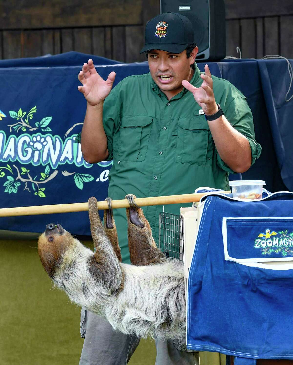 Clay Carabajal explains the behavior of sloths during a show at the Hyatt Hill Country Golf Club on Wednesday, June 9, 2021.