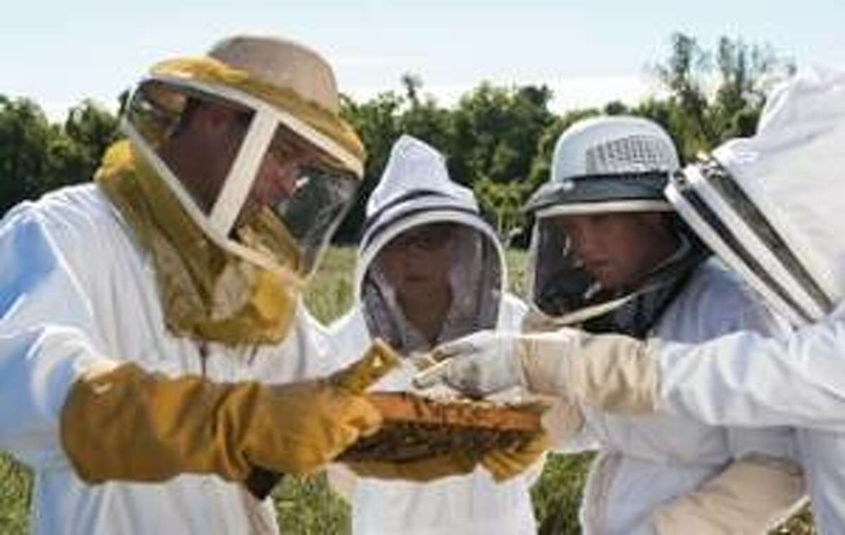 Jake Williams, PhD, associate professor of biological sciences in SIUE's College of Arts and Sciences, is shown with members of the SIUE Honey Bee Association.