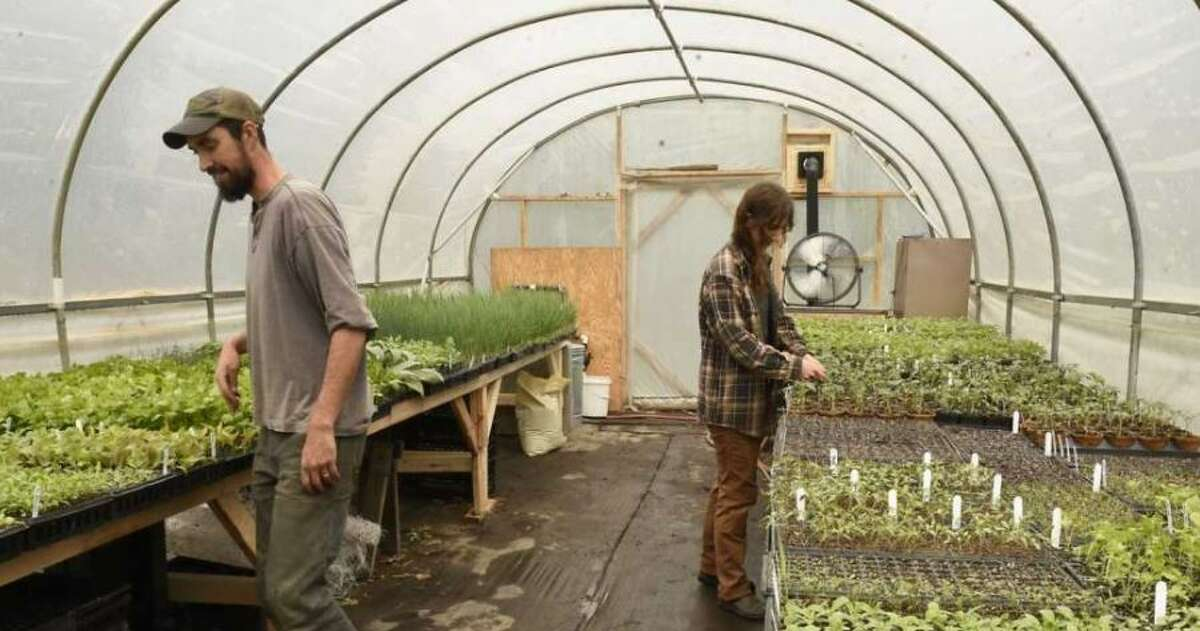 Local farms including Edible Uprising in Troy, which has greenhouses, are off to a good season this year.