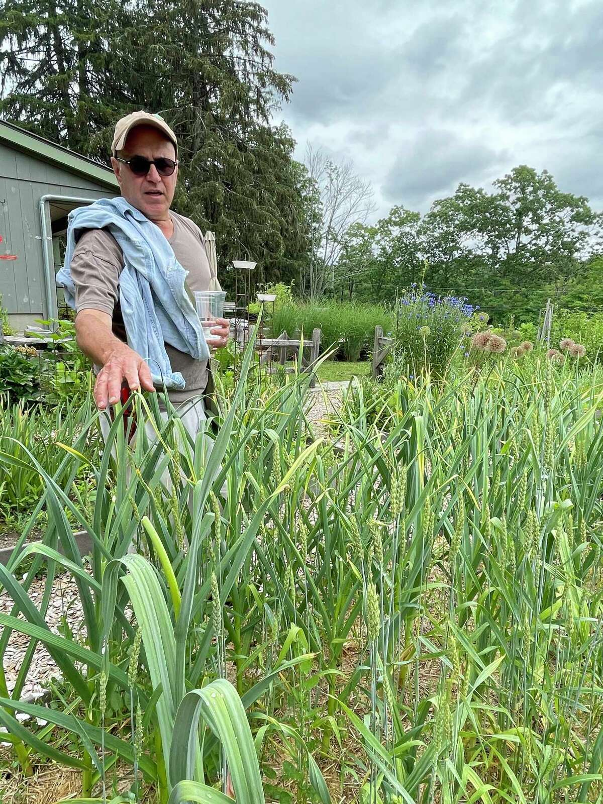 Michael Russo stands in his gardens at Guilford's Trout Lily Farm, which is part of the Pollinator Garden Tour, Saturday, June 26.