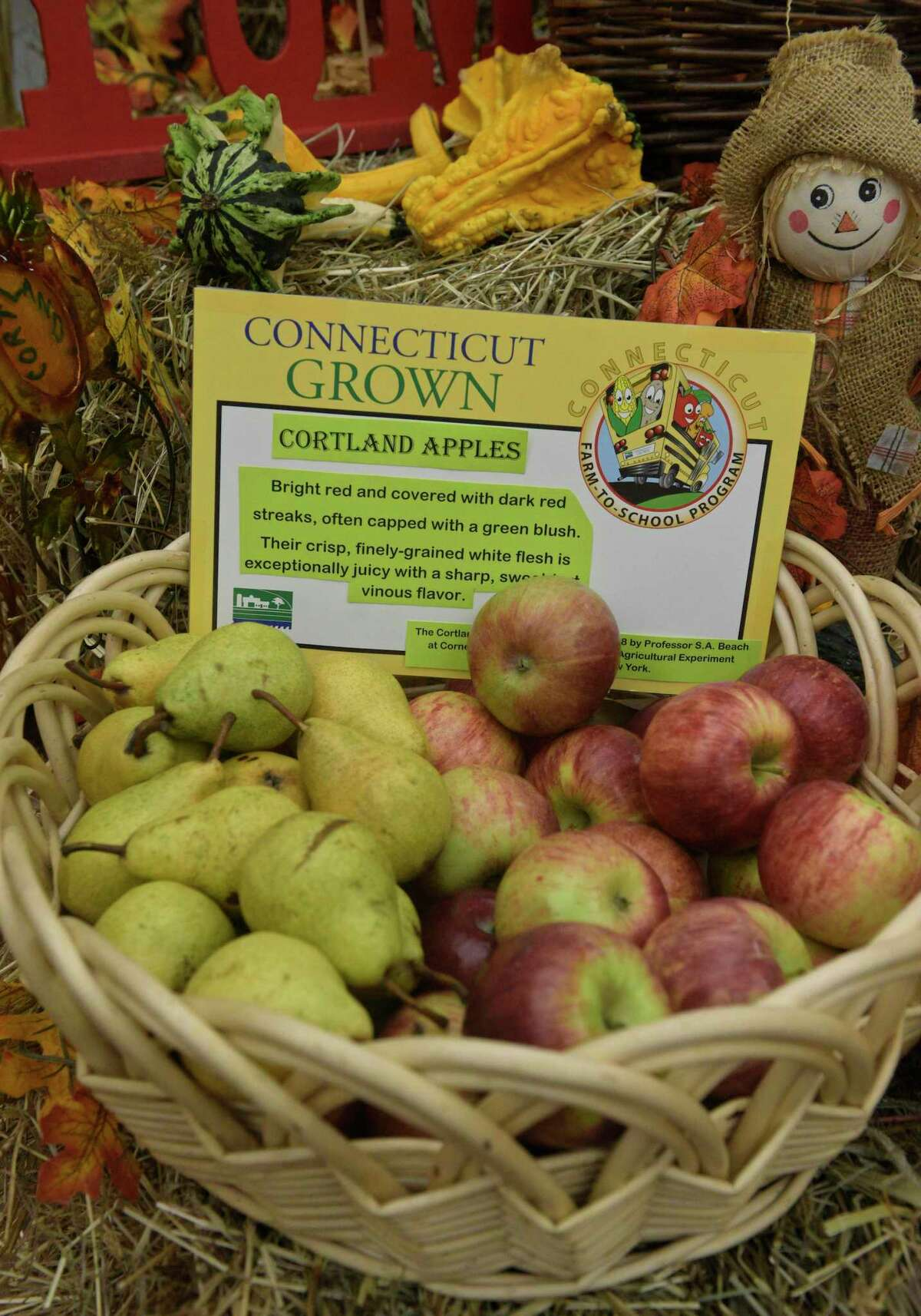 Connecticut-grown apples on display in New Milford.
