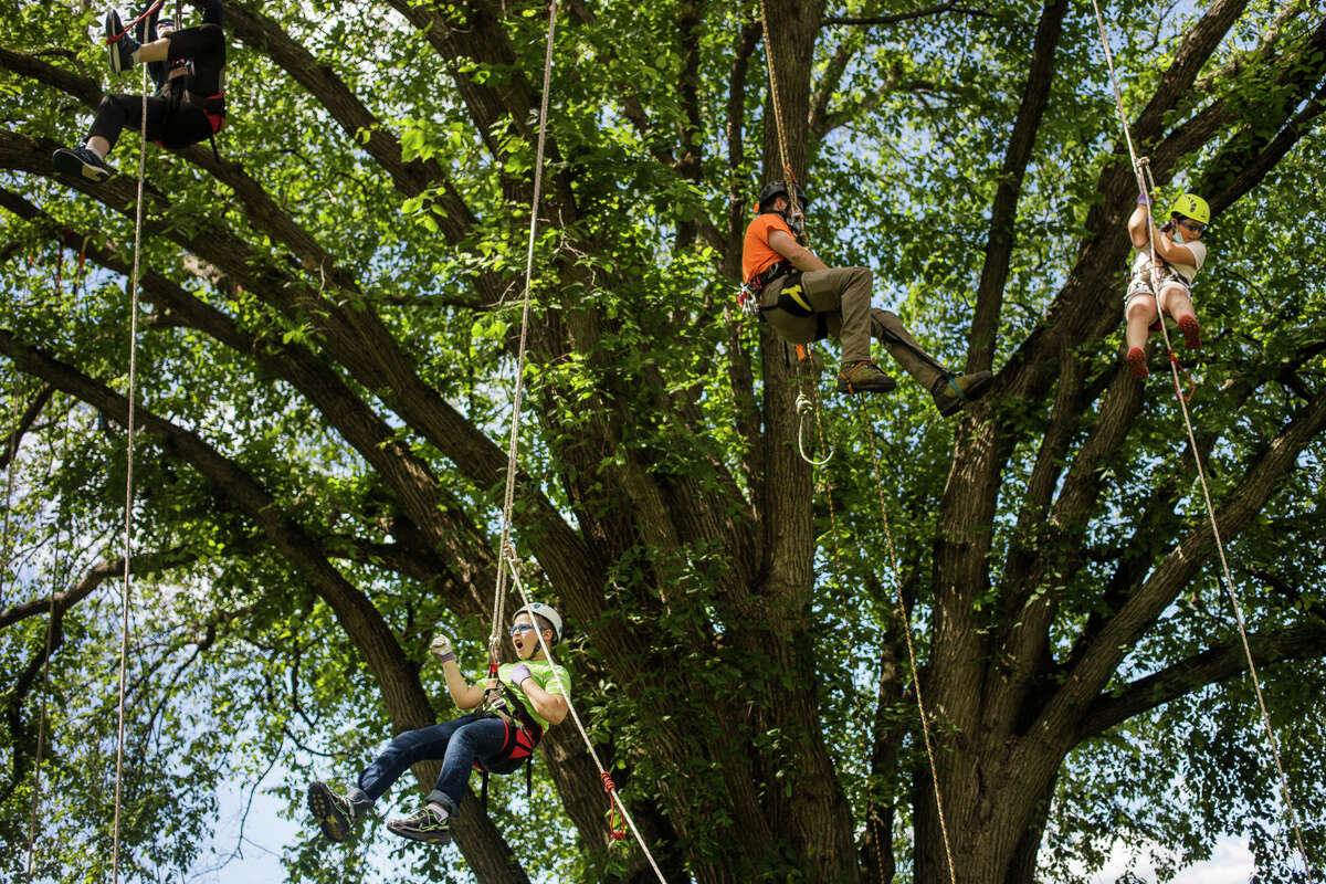 Henry Vanchura, 10, bottom, bangs on his chest like Tarzan while participating in a tree climbing event hosted by arborists at Dow Gardens alongside Lizzie Vanchura, 12, top left, and Hannah Fonger, 10, top right, with help from arborist Brian Siler, center, Tuesday, June 22, 2021 in Midland. (Katy Kildee/kkildee@mdn.net)
