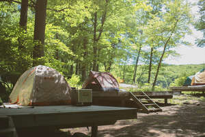 Booking an entire ring of sites at a campground like AMC Harriman with friends or family is a great way to reconnect with nature and your crew.