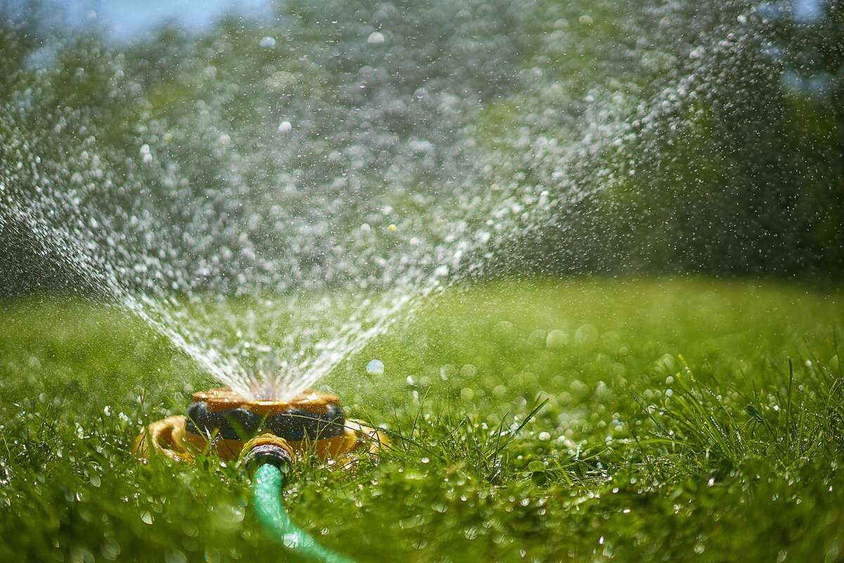 The city of Sonoma is limiting when resident can water lawns beginning July 1.