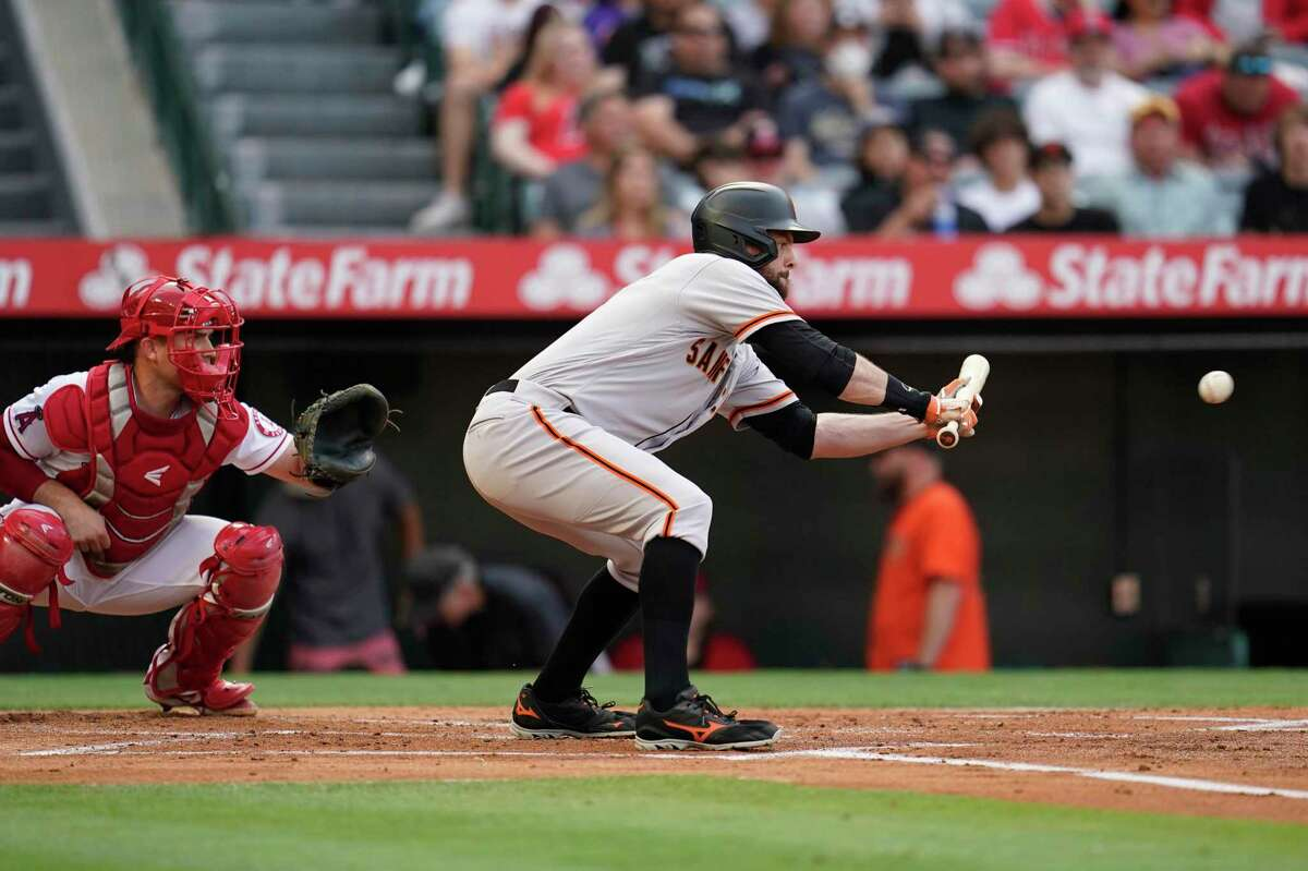 San Francisco Giants' Brandon Belt drives in a run on a squeeze play during the first inning of a baseball game against the Los Angeles Angels Tuesday, June 22, 2021, in Anaheim, Calif. (AP Photo/Marcio Jose Sanchez)