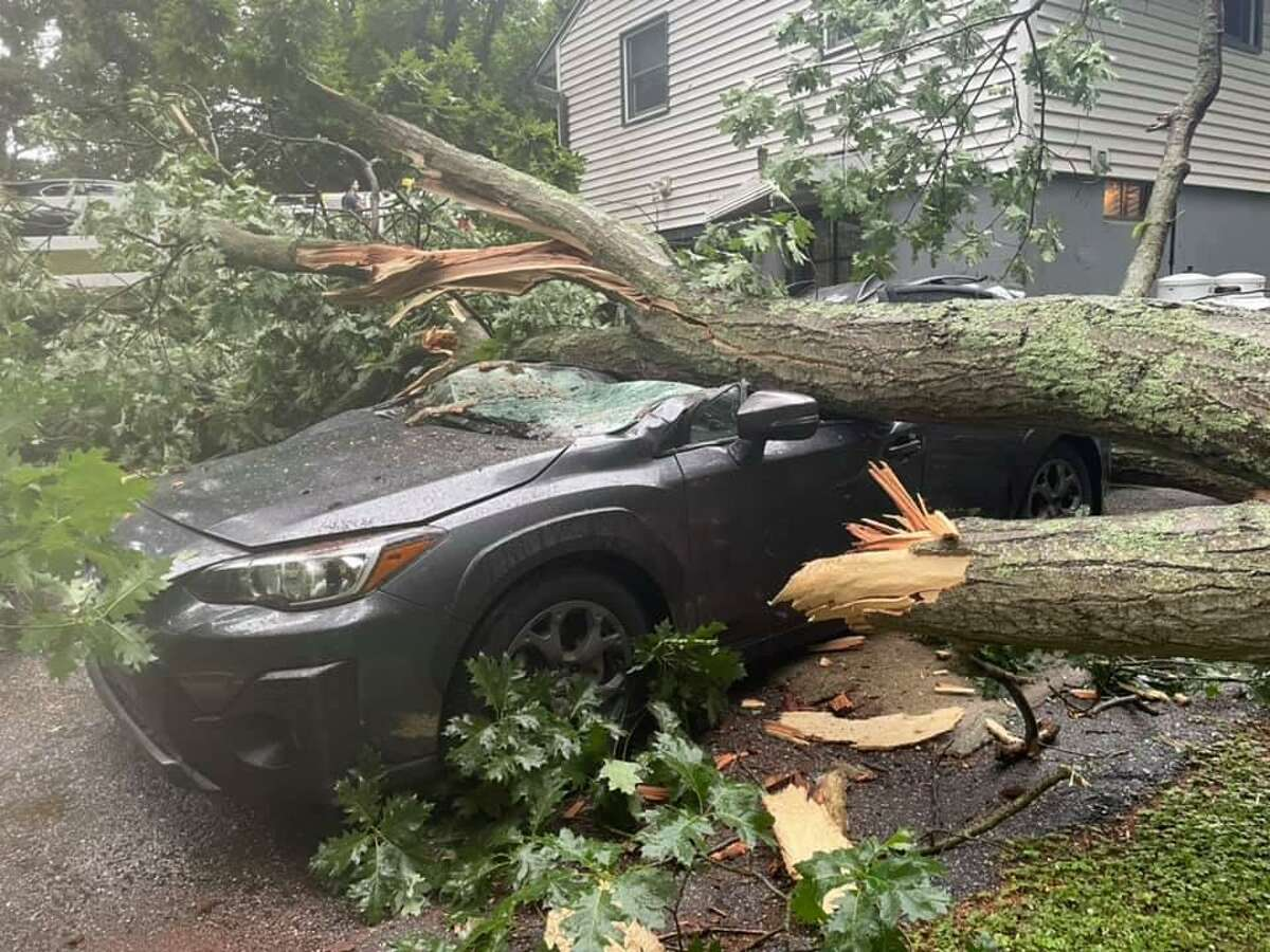A large tree on a vehicle in Shelton, Conn., on Tuesday, June 22, 2021.
