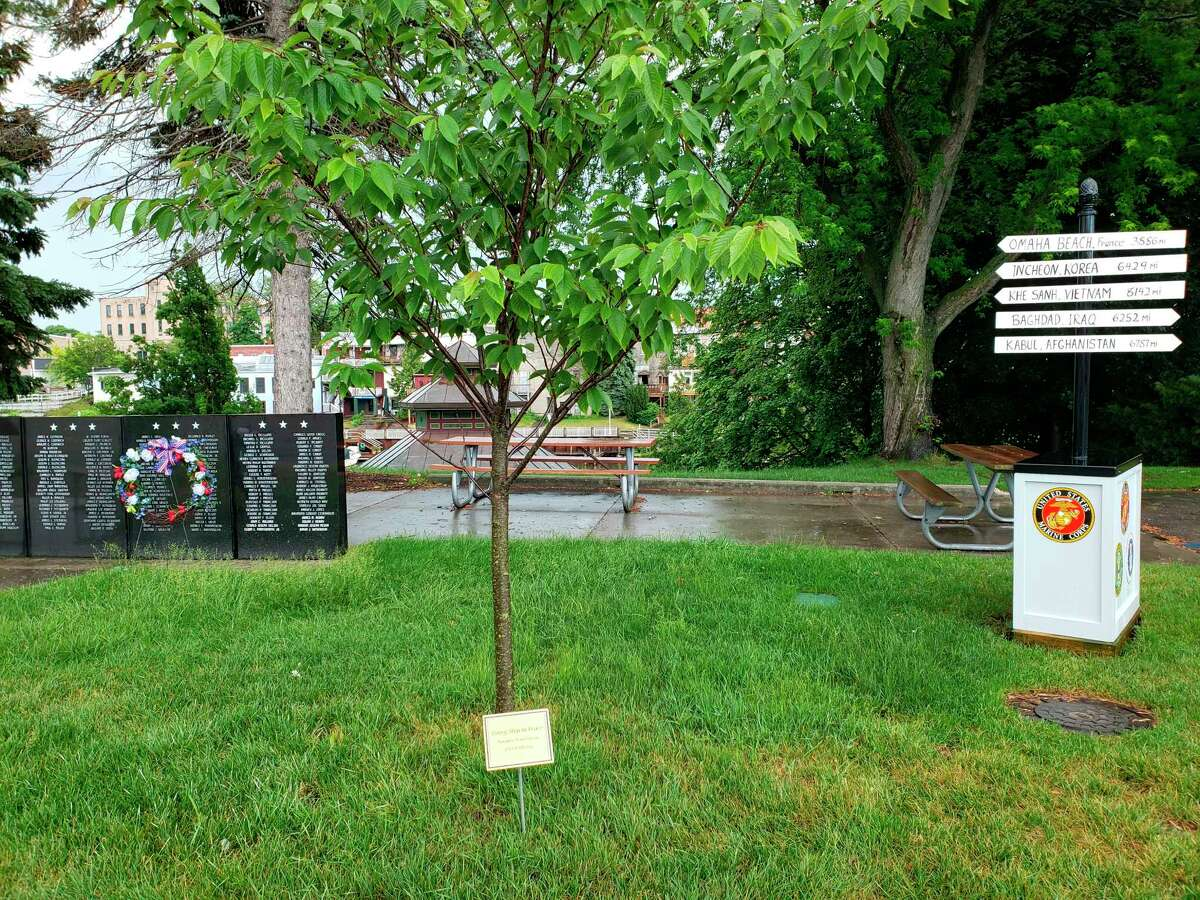 The Manistee Peace Group dedicated a plaque Saturday along Memorial Drive in Manistee. (Courtesy photo)