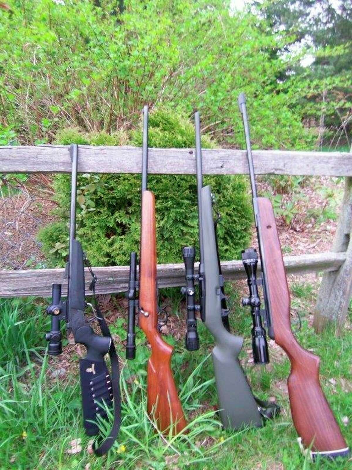 Some of the rifles Tom Lounsbury uses to hunt woodchucks are(from left) a(4X) scoped T/C Contender Carbine in .223, a (4X) scoped H&R bolt-action in.22 rimfire, a (3-9X) scoped Remington semi-auto in .22 rimfire, and a (3-9X)scoped, .17-caliber GAMO air rifle. (Tom Lounsbury/Hearst Michigan)