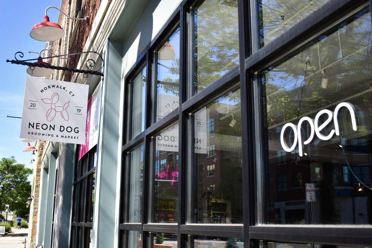 Neon Dog provides grooming and sells clothes, treats and bakery items in Norwalk, Conn., Thursday, Jun. 24, 2021.