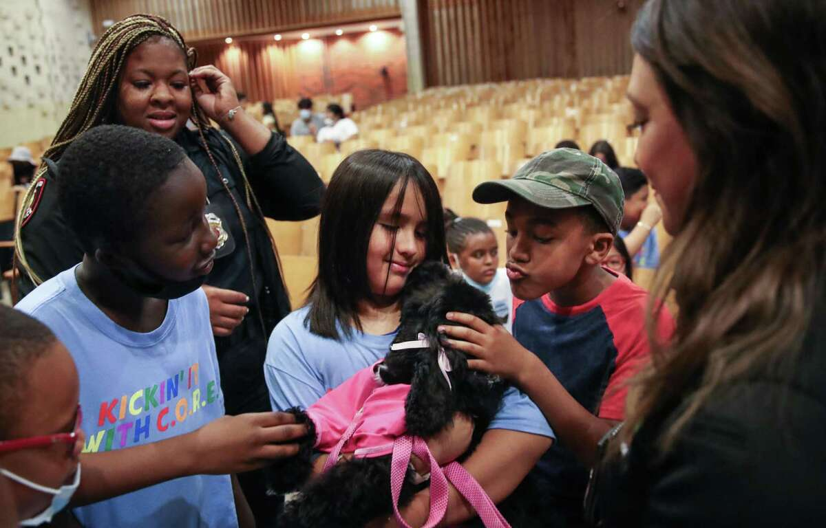 Donald Aryeetey Mensah, 9, from center-left, Ricardo Rodriguez, 10, and Jonathan Samuel, 10, pet Jamaica, a 14-week-old comfort dog, on Thursday, June 24, 2021, at Fondren Middle School in Houston. Jamaica is a Houston ISD Police Department comfort dog, and officers introduced students to the dog at a summer camp.