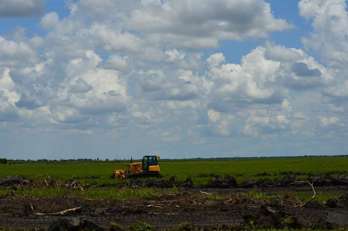 Crews begin clearing land in Fort Bend County for Spanish-based renewable conglomerate, Acciona, to begin work on a solar farm. The company said when the project is finished in 2022, it will be able to produce up to 317 megawatts of energy.