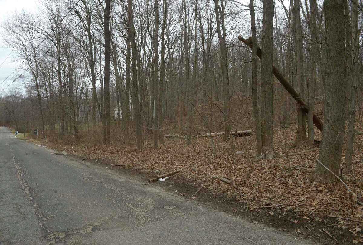 Land at 47 Shelley Road in Bethel, Conn., where developer Tim Draper previously proposed building a four-building, nine-unit development.