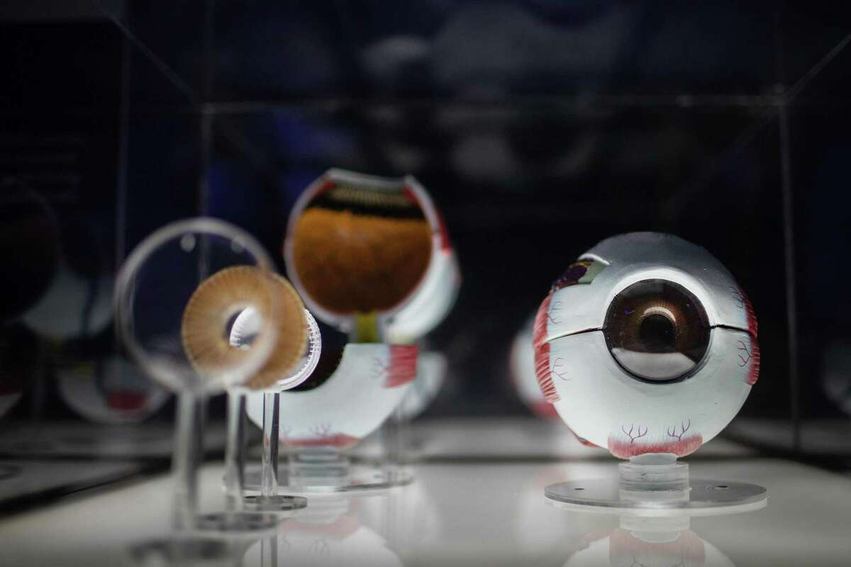 An eyeball model, its iris and lens at the Children's Museum of Houston.