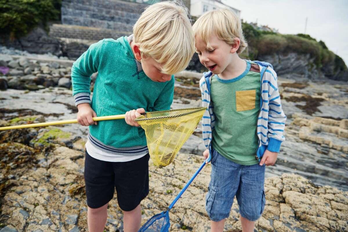 Due ragazzi che giocano nelle piscine naturali sulla spiaggia e guardano i granchi che hanno catturato