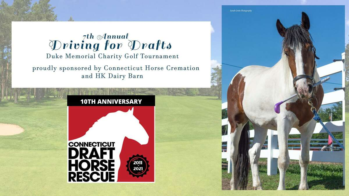 CT Drafts Horse Rescue's golf tournament, Driving for Drafts, is set for Sept. 18.