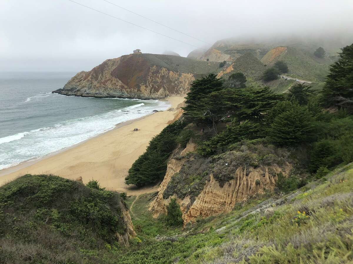 A 35-year-old man was in critical condition on June 26, 2021, after being bitten by a great white shark at Gray Whale Cove State Beach, according to the San Mateo County Sheriff's Office.