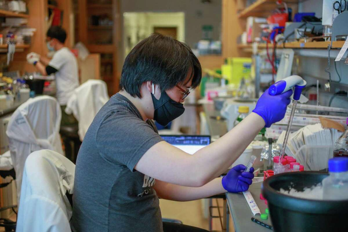 Post-doctoral fellow Dong Hee Chung works in Dr. Charles Craik's lab at UCSF.