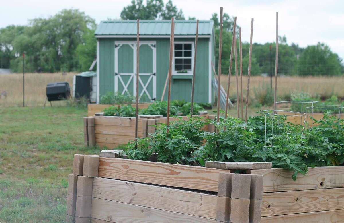 A community garden run by Manistee veterans isempowering veterans to become more self-sufficient by helping them grow a sustainable source of nutrition. (Kyle Kotecki/News Advocate)