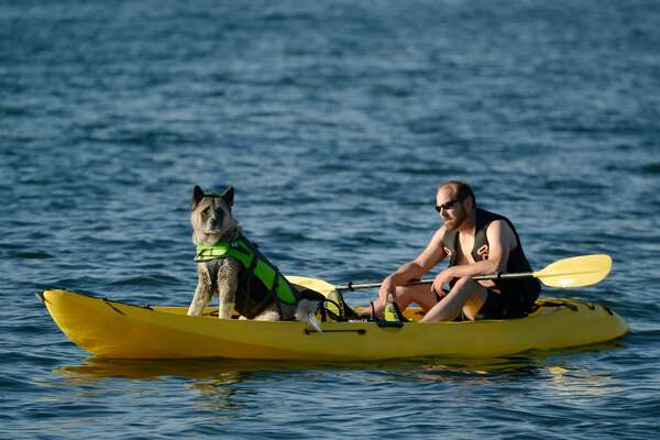 Man kayaks with dog, Summer on Puget Sound, Alki Beach, Seattle, Washington, July 2015