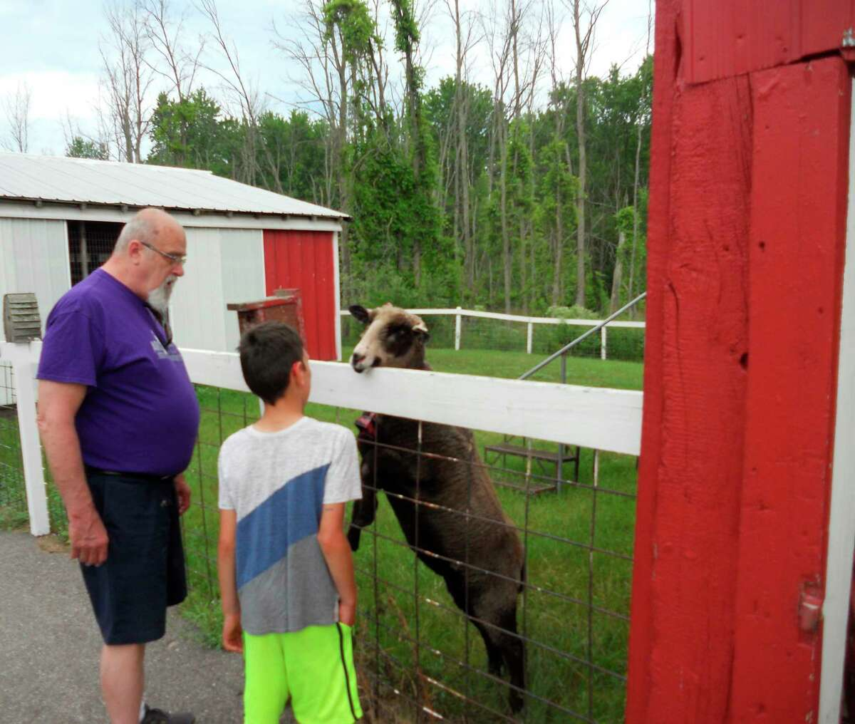 TheCircle Rocking S Children's Farm in Free Soil hosted a special needs summer camp day on Monday for theManistee ARC Summer Camp program.Participantshad the chance to seelive animals. (Courtesy photo)
