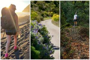 SFGATE staffers took hikes all over California this year, discovering The Lost Coast (left), the Channel Islands (middle) and the newly opened Foothills Park (right).