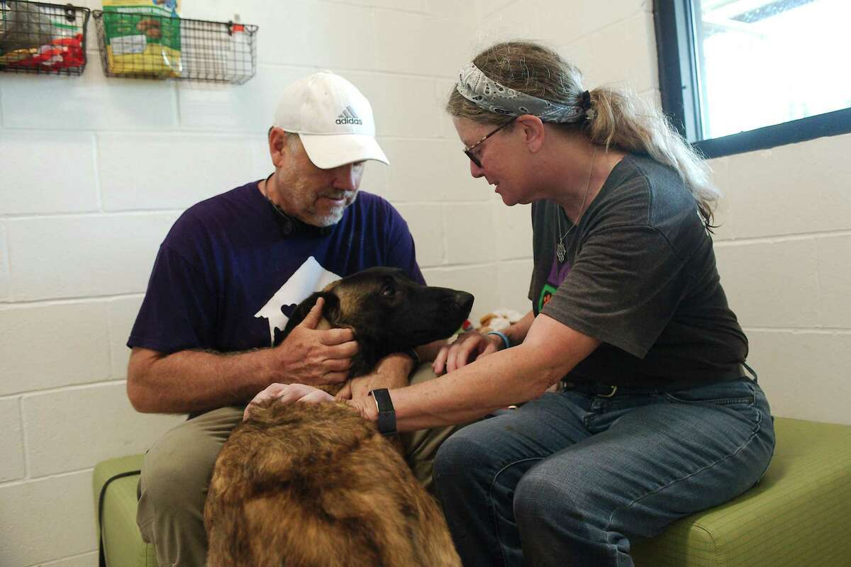 Shelter resident Duncan enjoys social time with volunteers Todd Guisler and Adrienne Bliss in a visitation room at the shelter.