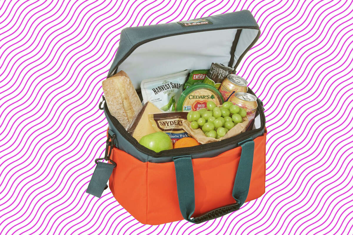 Softpack Cooler, Picnic Multi from L.L. Bean for $59