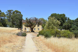 Olompali State Historic Park, located in Marin County, is home to both stunning hikes and thousands of years of history.