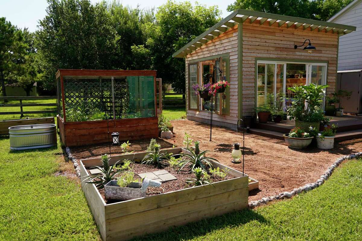 """The couple started with the raised bed """"shed"""" and metal troughs, back left, then added the greenhouse, back right, and uncovered raised beds, foreground."""