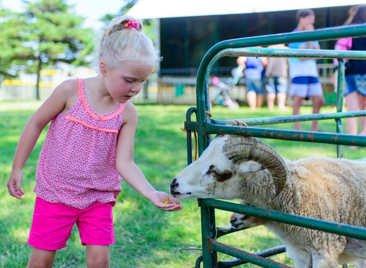 The Manistee National Forest Festival takes place from July 1-5 with a petting zoo, carnival, flea market, timber art and other events at Douglas Park First Street Beach in Manistee.