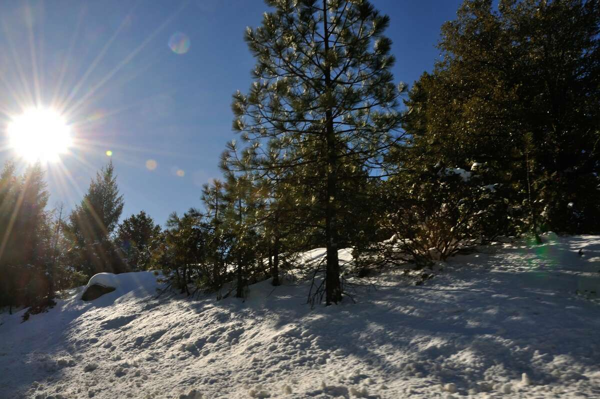 A snowy view of Forest Ranch, Calif.
