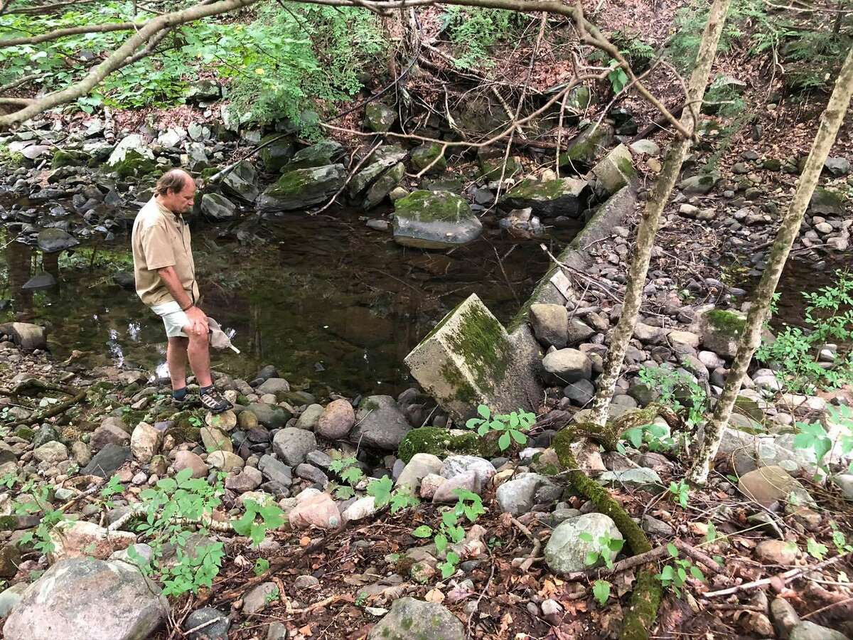 The Comstock Brook dam has been approved for removal by the Wtilon Inland Wetlands Commission. The Mianus Chapter of Trout Unlimited will oversee the removal.