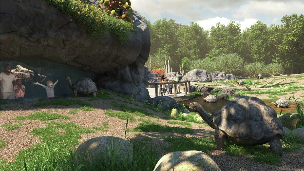 """Houston Zoo's giant tortoises will have a new habitat in 2022 when the """"Galápagos Islands"""" exhibit open."""