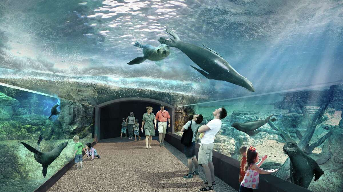"""Rendering of the Houston Zoo's upcoming """"Galápagos Islands"""" exhibit debuting fall 2022 as part of the """"Keeping Our World Wild"""" centennial campaign and master plan."""