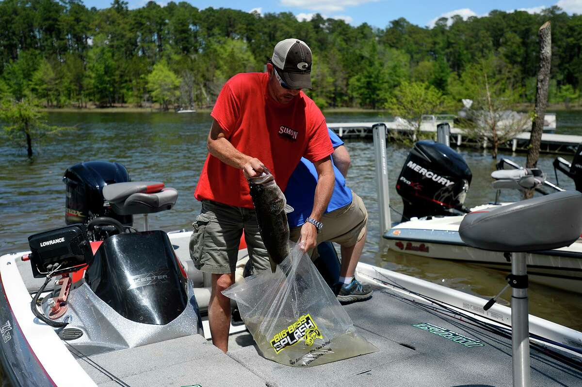 Terry Mullen, of Vidor, bags his fish to be weighed at the Big Bass Splash on Lake Sam Rayburn in Brookeland on Friday. Photo taken Friday 4/22/16 Ryan Pelham/The Enterprise